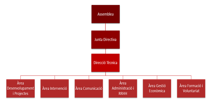 Departments of the APSOCECAT explained through a box diagram
